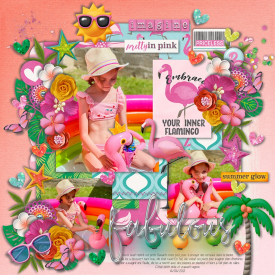 flamingo_imagine_gallery_1_One_Little_Word_Imagine.jpg