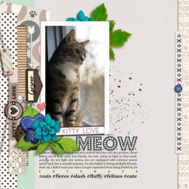 meowWEB.jpg