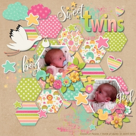 sweet_twins_gallery_4_Inspired_By_Paper_Piecing.jpg