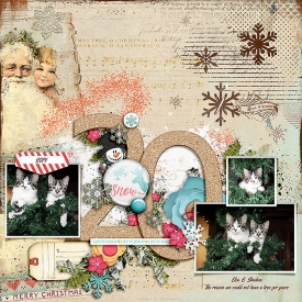 fdd_DecemberDetails3_tp20.jpg
