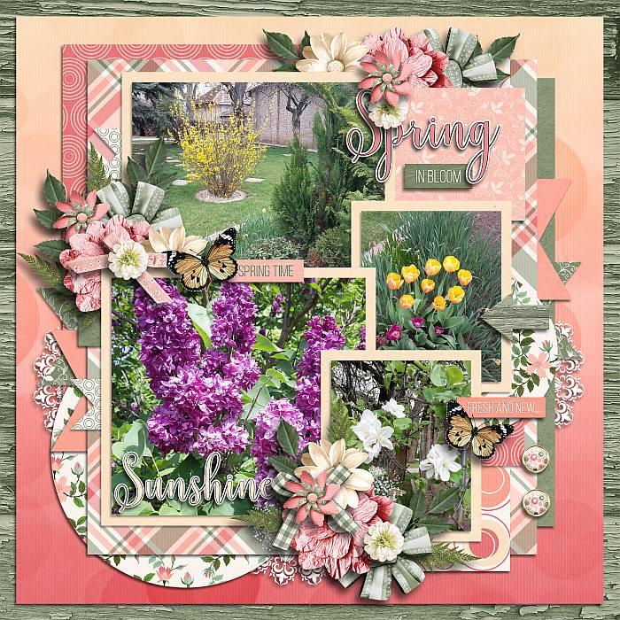 Springbloommlip26
