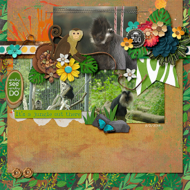 2014-08-02-jungleoutthere_sm.jpg