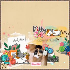 2021-02-19-kittycat_sm.jpg