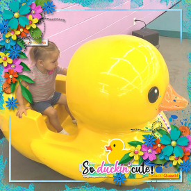 HSA-the-bigger-picture-8_cmg_rubberducky_robin_700.jpg