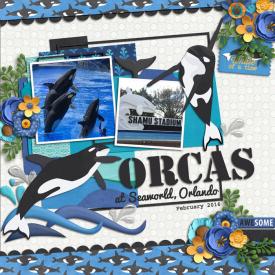 OrcasWEB.jpg