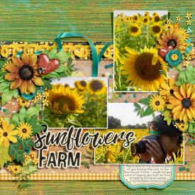 Sunflowers_Dalis_700.jpg