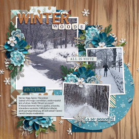 Winterwalkceaf71.jpg