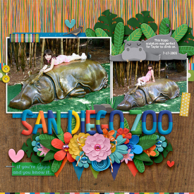 aclever-monkey-graphics-hooray-hippos-tracey2.jpg