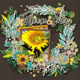 cmg-digicut-shell-wreath-sunflower-sayings.jpg