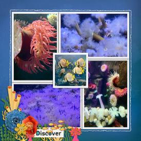 cmg-frames18-ocean_sized.jpg