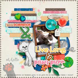 cmg-purrfect-kitty2-700.jpg