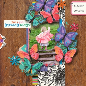 cmg_butterflyseasontemplate_robin_700.jpg
