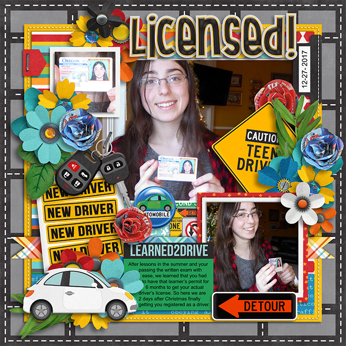 tracey2-learn2drive