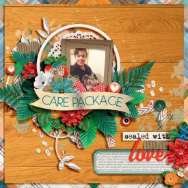 CarePackage_Dalis_700.jpg