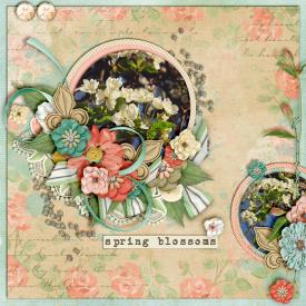 Fresh-blooms-700-381.jpg