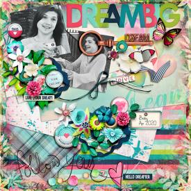dreambig-copy2.jpg