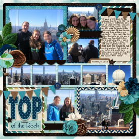 25_NYC_Top_of_the_Rock_copy.jpg