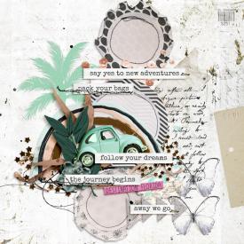 Aug17_SSD_Shadowbox_Circles_Destination-Florida.jpg