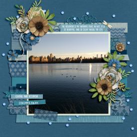 Aug18_SSD_Shadowbox_Beautiful-Place_Central-Park-Reservoir.jpg