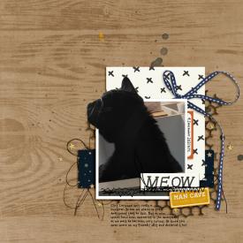 Aug22_SSD_Shadowbox_Extraction-Meow.jpg