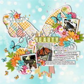 Butterfly_Beauty.jpg