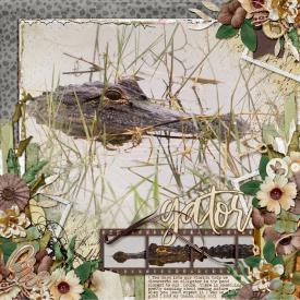 Florida_Pond_Gator.jpg