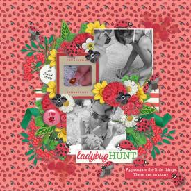 Ladybug_hunt_2.jpg