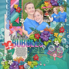 life-is-the-bubbles.jpg