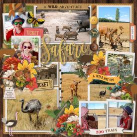 safari_train_Autreche_gallery.jpg
