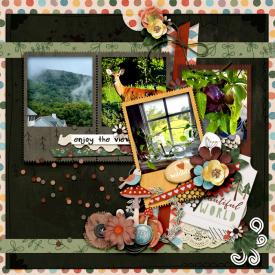 tnp_iDSDtemplates_AngieMillerLO1.jpg